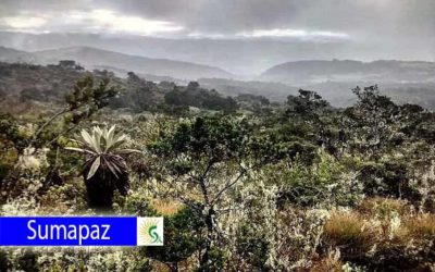 Localidad de Sumapaz recibirá regalías por más de 73 mil millones de pesos